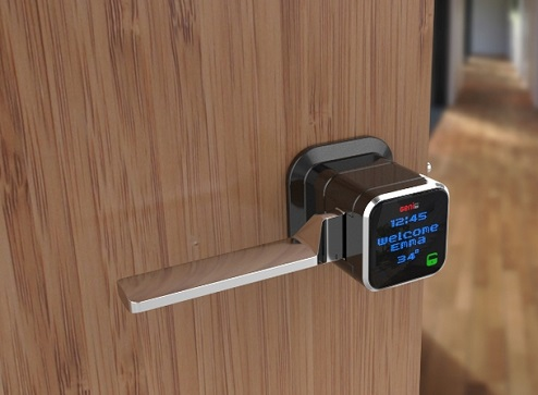Genie Smart Lock with Person Infromation and Temperature